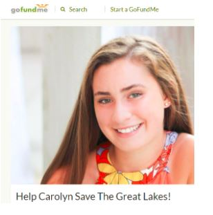 Screenshot of Carolyn's GoFundMe website