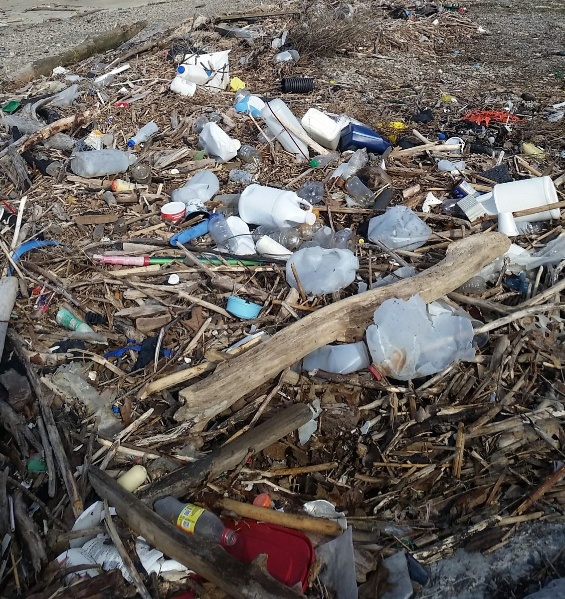 Plastic litter becomes Great Lakes plastic pollution