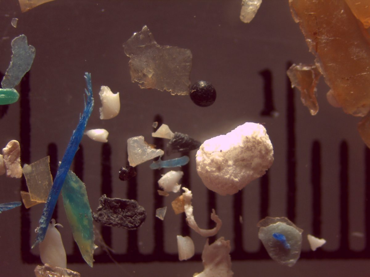 Microplastic is a major contributor to plastic pollution in the Great Lakes