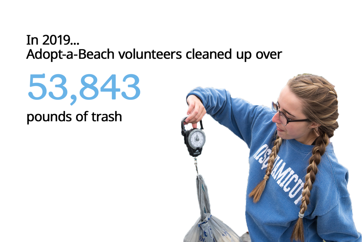 Adopt-a-beach volunteers cleaned up over 53,843 pounds of trash