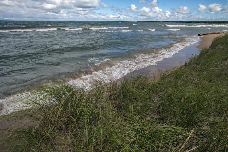 healthy shore line