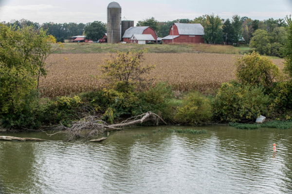 Farm field next to Maumee River, photo by Lloyd DeGrane