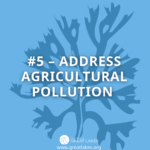 #5 - Address Agricultural Pollution