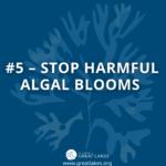 #5 - Stop Harmful Algal Blooms