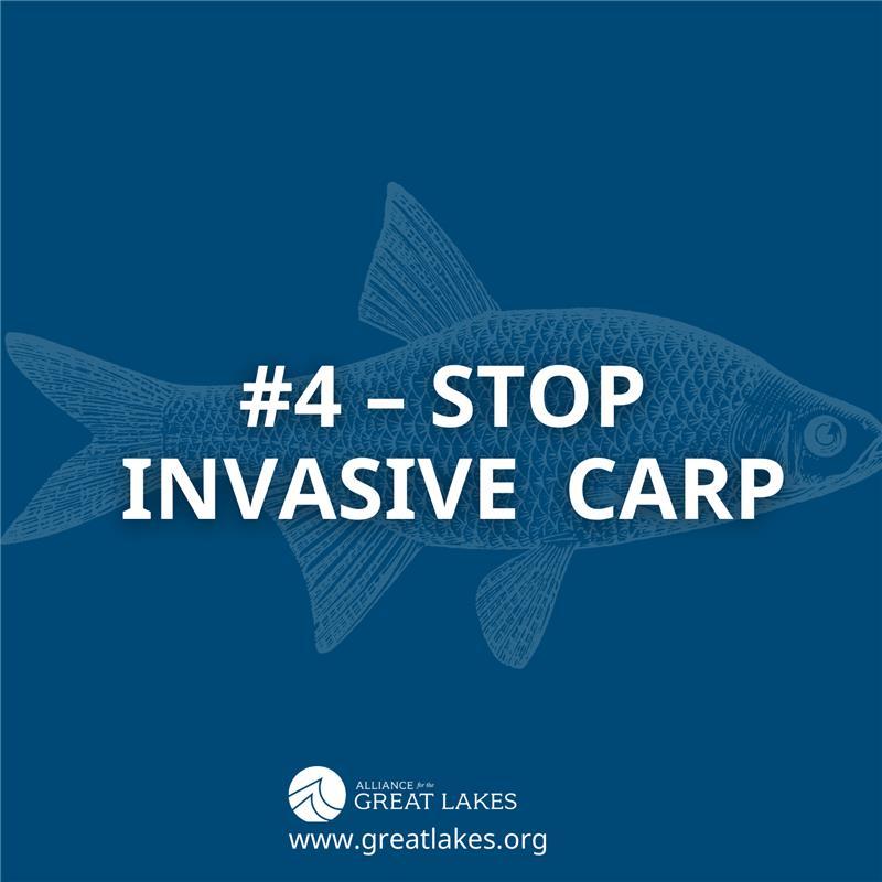 #4 - Stop Invasive Carp